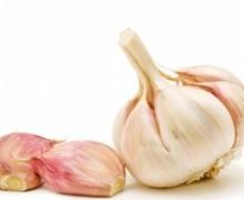 Le virtu' dell'aglio